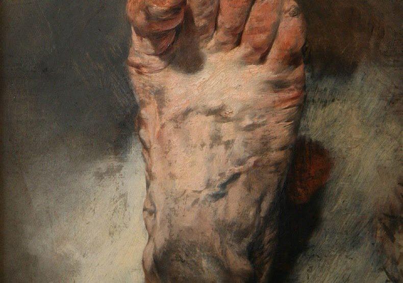 La vita dei piedi